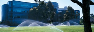 commercial irrigation for office complex