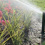 Lawn water sprinkler head